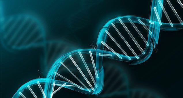 ANS amplia cobertura obrigatória para 29 doenças genéticas